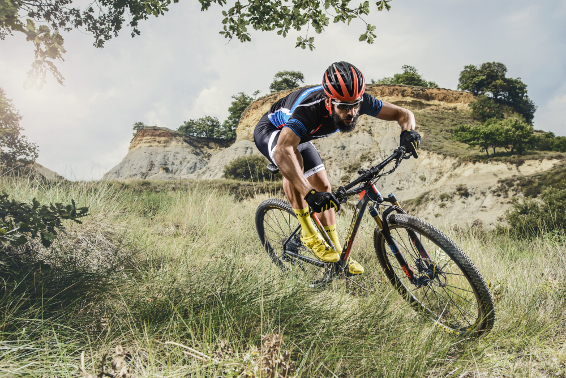 Cross Country-Racebike / Bild: Orbea Bikes