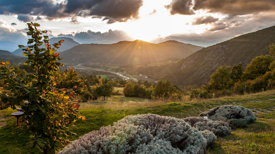 Mountainbiketour Provence / Bild: bikefex.at