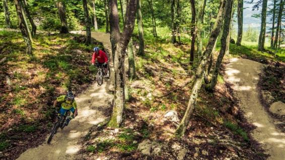 Flow Country Trail: Das Mountainbikeparadies auf der Petzen / Bild: Flow Country Trail