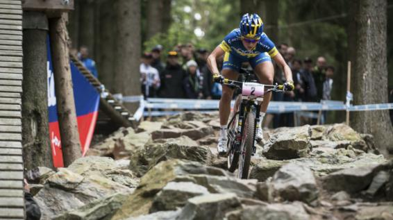 Mountainbike-Kategorien im Überblick: Das Cross-Country- / Race-Bike / Bild: Scott