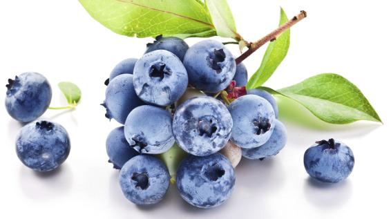 Post-Workout Food: Blaubeeren / Bild: iStock / ValentynVolkov
