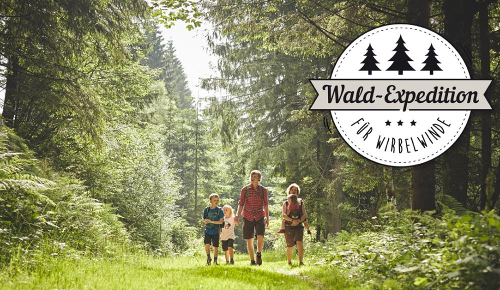 Wiener Alpen Wald-Expedition