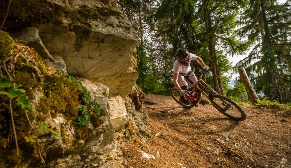 So findest du das Mountainbike, das wirklich zu dir passt ...