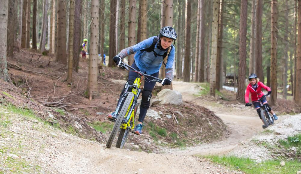 Wexl Trails 2019